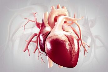 ارتباط مستقیم سلامت قلب و عروق به حمام آب گرم
