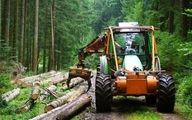افزایش ۱۰ درصدی برداشت چوب از جنگل های رو به زوال ایران