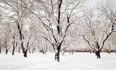 بارش شدید باران و برف در پیش است
