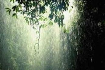 بارش باراش از امشب در پایتخت