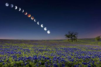 ماه چگونه خونین شد؟