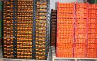 فرصت ۲ماهه دولت برای صادرات ۸۰ هزار تن مرکبات انباری در معرض فساد