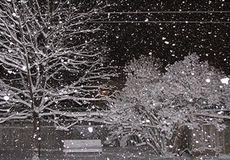برف و تگرگ در پایتخت