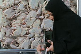 مرغ در سراشیبی ارزانی