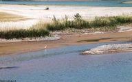 بحران خشکسالی در پرباران ترین استان کشور (عکس)