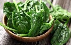 این گیاهان درمانی و مفید