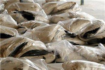 کشف محموله موادمخدر از کامیونی در غرب تهران