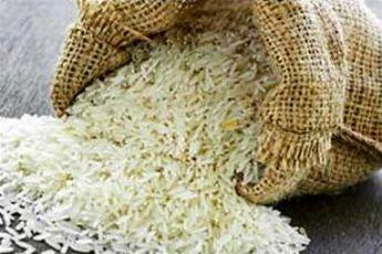 برنج آلوده؛ وزارت بهداشت دست به کار شد