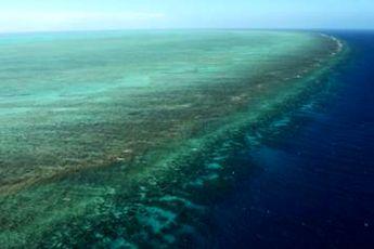 پایش آنلاین مرجان ها در چابهار