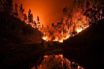 افزایش گستردگی آتش سوزی جنگل های آمریکا