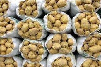 سود بازرگانی واردات سیب زمینی ۴درصد شد