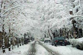 برف به داد تهران رسید