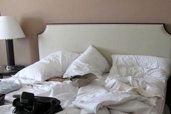 اگر رابطه خوبی با شپش دارید به این هتل ها بروید!